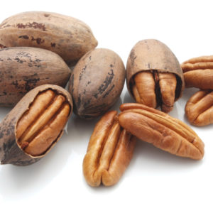 A group of pecan nuts on a white background