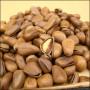 семена сосни сибирской
