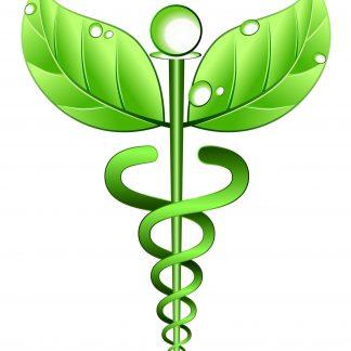 Медичні рослини