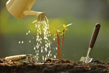 Водорочинне добриво Puccioni 18.18.18+ 2MgO + TE (для підживлювання різних рослин в період росту) 200грам
