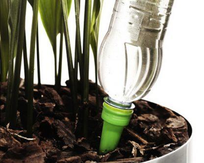 Водорозчинне добриво (для хвойних рослин, азалій, рододендронів) Puccioni 9:18:36+ 2MgO + МЭ 200грам