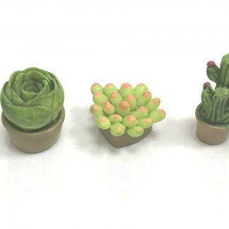 Комплекти рослин
