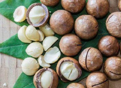 Орех Макадамия  Macadamia  цена за 1 саженец